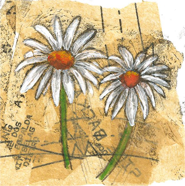 Daisies - Mixed media on paper (Open edition gicleé print available £18.50 and greeting card £2.50)