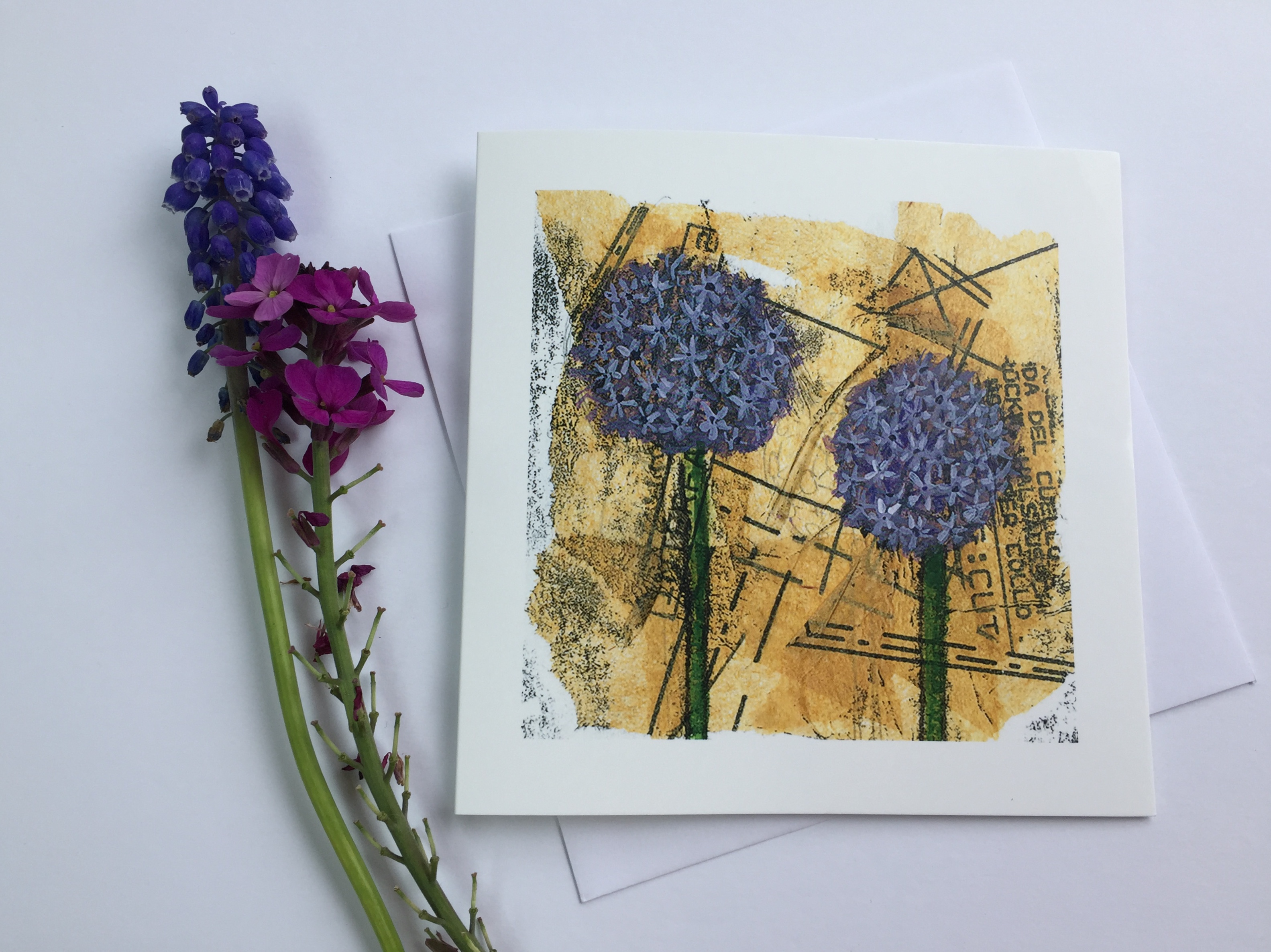 'Allium' Greeting Card