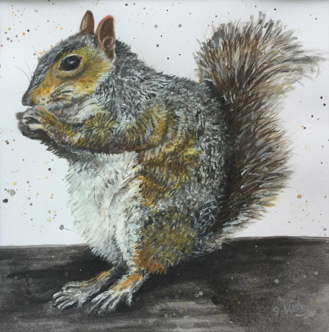 Squirrel - Acrylic and watercolour on paper (Original available £75)