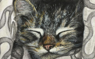 Animals……paintings and commissions