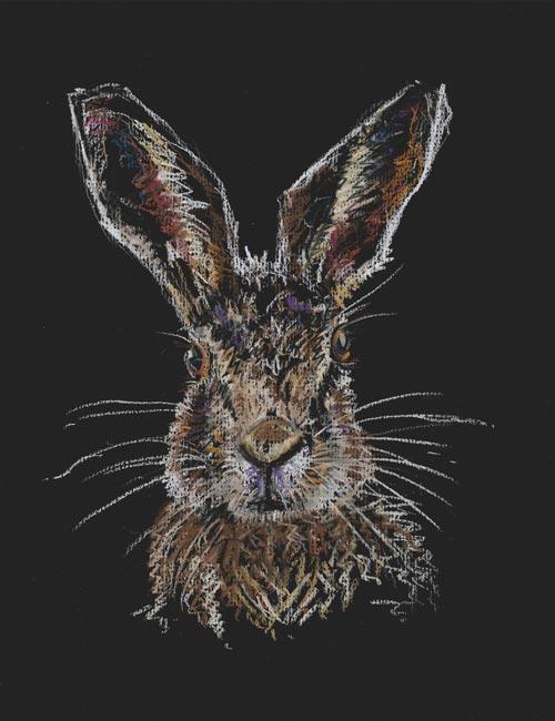 Black Hare -  Pastel Pencil (Open edition giclée prints available £35)