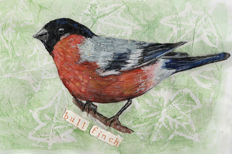 Bull Finch - mixed media on paper (open edition prints avaliable)