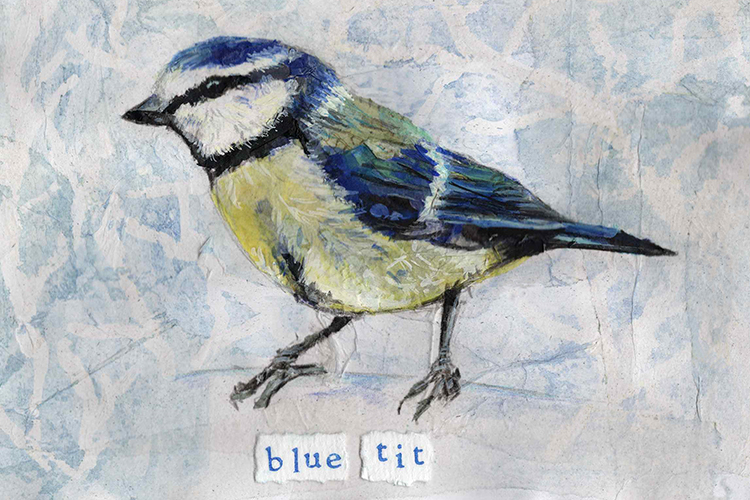 Blue Tit - mixed media on paper (open edition prints avaliable)